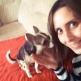 Isco (Chihuahua)