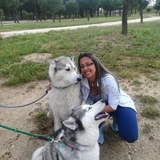Perla Y Bruno (Husky Siberiano)