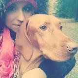 Amy  (Kurzhaariger Ungarischer Vorstehhund)