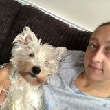 Poppy (West Highland White Terrier)