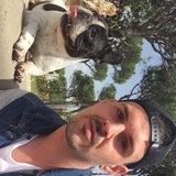 Dana - Bulldog Francés