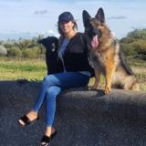 Mia (German Shepherd Dog)