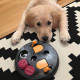 Barney (Golden Retriever)