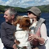 Bryn (Welsh Springer Spaniel)