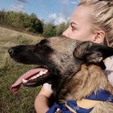 Nikita (Belgian Shepherd)