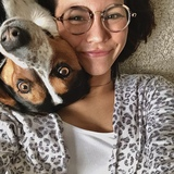 Pippa (Appenzeller Sennenhund)