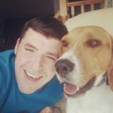 Pablo (Beagle)