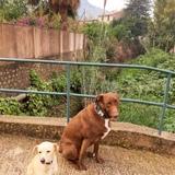 Coco&Nala