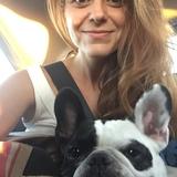 Olivia (Bulldog Francés)