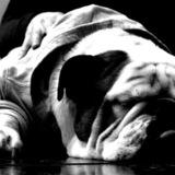 Pimo - Bulldog Inglés