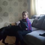 Zoe (German Shepherd Dog)