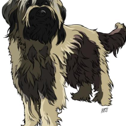 Thumb dog 4