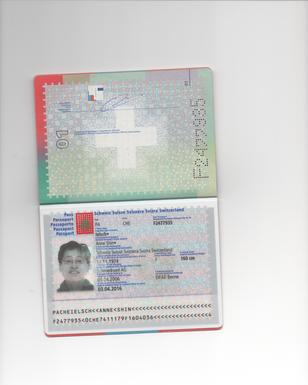 Profile passeport 001