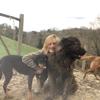 Maria: Paseo con perros en Zarautz 🐶💕