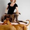 Marta: Auxiliar veterinaria guarderia en prosperidad, av america