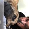 Laura: Dog sitter à valdahon
