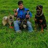 Sonja: Familiäre Hundebetreuung