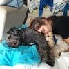 Irene: Cuidadora de perros con experiencia