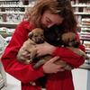 Laura: Animalover, tu mascota tendra el mejor cuidado