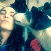 Bego Y Mikel: Alojamiento y socialización canina...