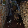 Inge: Individuelle Hundebetreuung im Privathaushalt