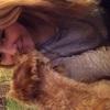 Charlotte: Hundesitter in Blankenese/Umgebung