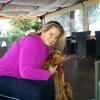 josie: hundesitter in Dieburg