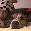 Nadia: Cuidamos tu perro como si fuera nuestro