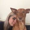 Maria: Passionate and experienced dog walker/sitter in brighton!!!