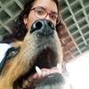 """Elsie: Guardería de perros , """"Como en casa""""."""