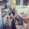 Alvaro : Guardería y residencia canina, lo que realmente necesita tu perr@