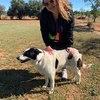 Celia: Paseadora y cuidadora de Perros y gatos en Valencia