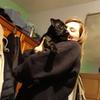 Ellie: Doggy lovers fun house