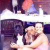 Kyra: ¿Quieres que tus perros estén como en casa y con amigos?