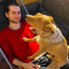 Max: Barcelona Gracia - English Dog Sitter