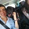 Francisco: Se pasean y cuidan perros! Muy económico!