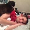 Rory: Dog walker/sitter in Somerset