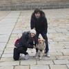 Yulia: Cuidadora y amante de los perros en Barcelona ciudad