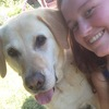 Lauren: Dog walker in Bangor