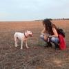 Victoria: Cuidados y atenciones para todos los perros