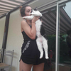 Diana: La passion des animaux