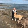Jeanne: DogSitter à Gif Sur Yvette