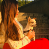 Maria Daniela: Tu perro se sentirá en casa 🐾