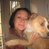 Vicky: Happy holiday dog care