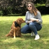 Ennola: Dogsitter Champagne au mont d'or