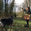 Pierre et Mélodie : Couple amoureux des chiens cherche compagnon de balade 🐶🐕🐩