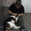 Laura: Paseadora/cuidadora de perros