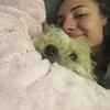 Mey: Pour l'amour des chiens