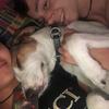 Angie: Cuidadores de perros en pueblos