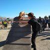Juan Manuel : Paseos de perros